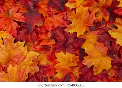 Hd Wallpaper Texture Fall Harvest Autumn Images Stock Photos Amp Vectors Shutterstock