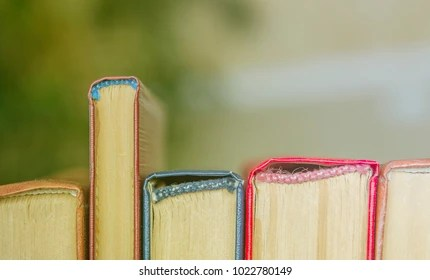 Childrens Book Images Stock Photos Vectors Shutterstock