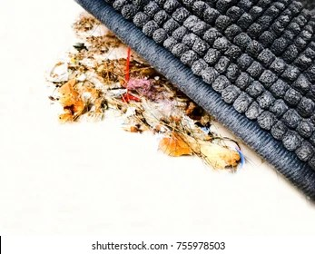 Sweep Under The Carpet Images Stock Photos Vectors