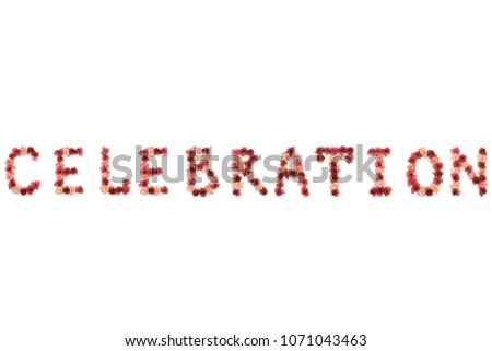 Word Celebration Letter Lined Fresh Natural Stock Photo (Edit Now