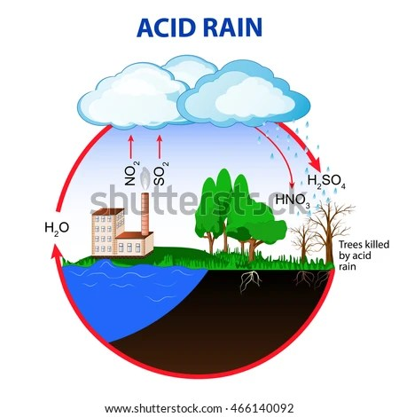Acid Rain Caused By Emissions Sulfur Stock Vector (Royalty Free
