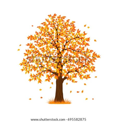 Maple Leaf Wallpaper For Fall Season Autumn Fall Tree Stock Vector Royalty Free 695582875