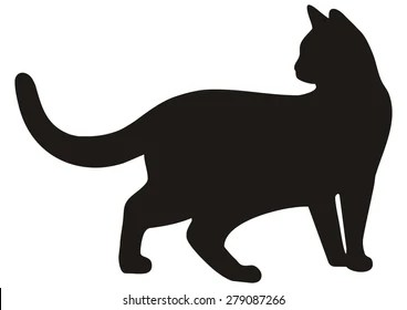 Halloween Black Cat Wallpaper Black Cat Silhouette Images Stock Photos Amp Vectors