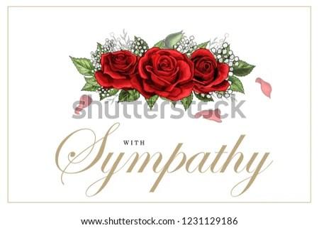 Condolences Sympathy Card Floral Red Roses Stock Vector (Royalty