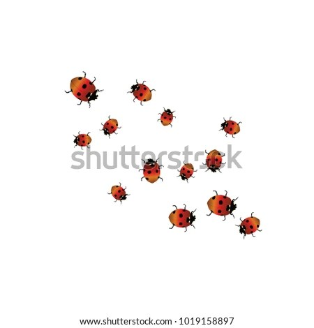 Delicate Background Ladybugs Trendy Template Postcard Stock Vector