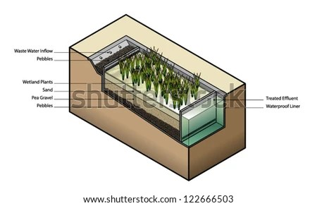 Diagram Waste Water Treatment Using Wetland Stock Vector (Royalty