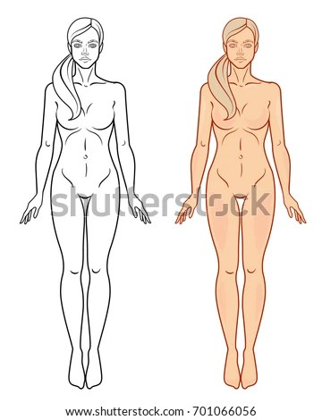 Female Body Template Isolated Vector Image Stock Vector (Royalty