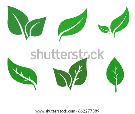 Green Leaf Vector Template Bright Green Stock Vector (Royalty Free