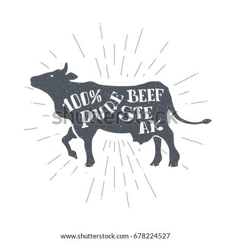 Hand Drawn Vintage Cow Sketch Style Stock Vector (Royalty Free