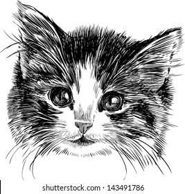 Cute Cats Wallpaper With Polka Dot Bow Tie Hand Drawn Cat Images Stock Photos Amp Vectors Shutterstock