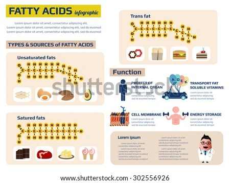 Health Infographic Fatty Acid Nutrition Fact Stock Vector (Royalty
