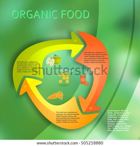 Healthy Cooking Organic Food Icons Modern Stock Vector (Royalty Free