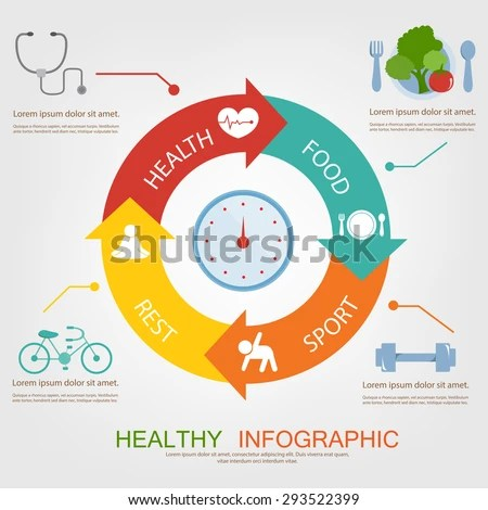 Healthy Infographic Food Exercise Plan Stock Vector (Royalty Free