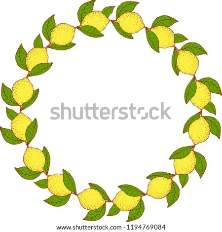 Lemon Boarder Vector Isolated Stock Vector (Royalty Free) 1194769084