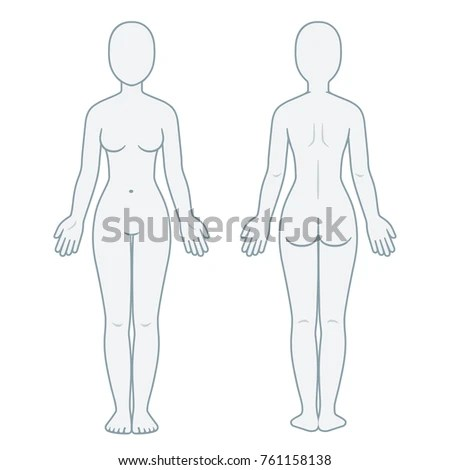 Nude Female Body Front Back View Stock Vector (Royalty Free