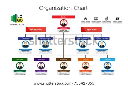 Organization Chart Template Stock Vector (Royalty Free) 755427355