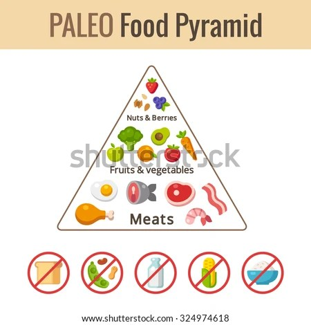 Beyond The Food Pyramid How Charts Build Foundation For - Nutrition