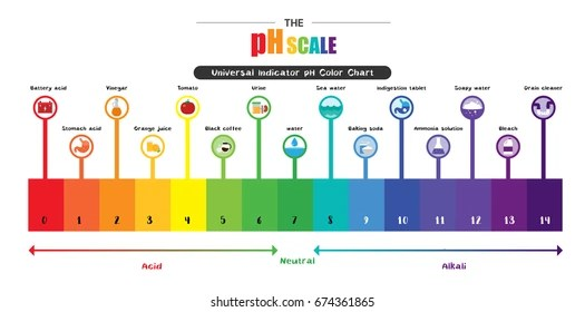 Ph Scale Images, Stock Photos  Vectors Shutterstock - ph chart