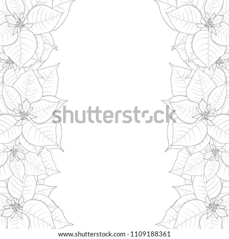 Poinsettia Outline Border Isolated On White Stock Vector (Royalty