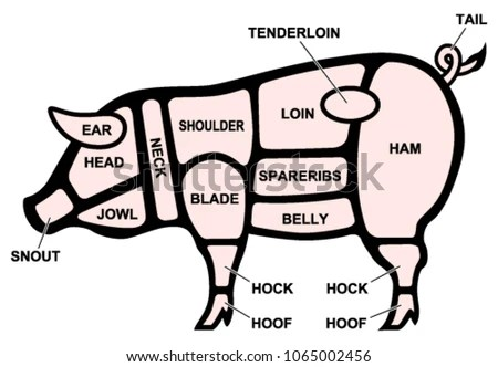 Pork Cuts Diagram Stock Vector (Royalty Free) 1065002456 - Shutterstock