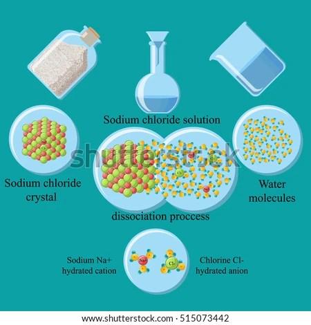Process Dissociation Table Salt Sodium Chloride Stock Vector