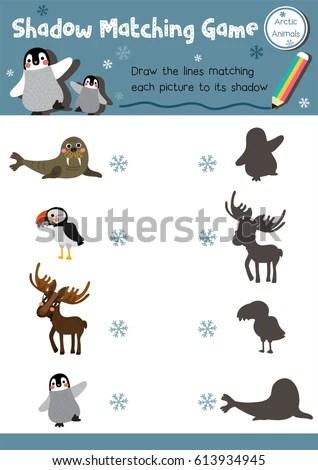 Shadow Matching Game Arctic Animals Preschool Stock Vector (Royalty