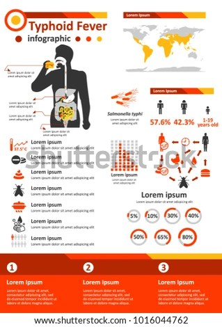Simple Flat Style Infographics Components Health Stock Vector - health components