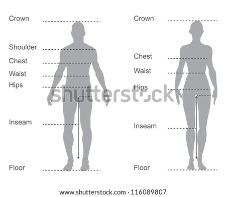 Size Chart Measurement Diagram Male Female Stock Vector (Royalty