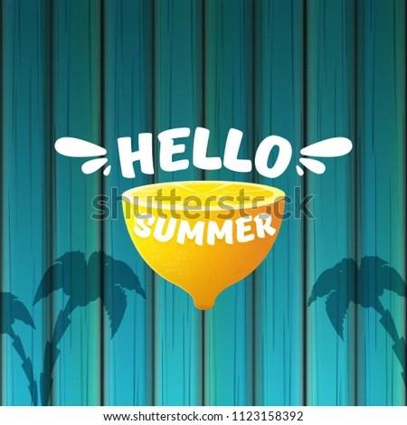 Vector Hello Summer Beach Party Flyer Stock Vector (Royalty Free