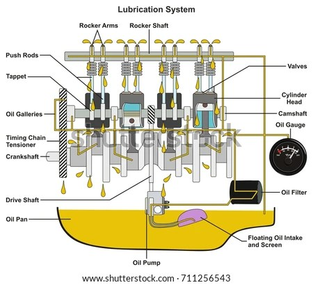 Simple Car Engine Oil Diagram - 4hoeooanhchrisblacksbioinfo \u2022
