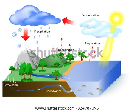 Rain Cycle Diagram Electronic Schematics collections
