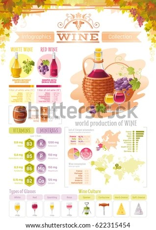 Wine Grapes Food Drink Infographics Icons Stock Vector (Royalty Free