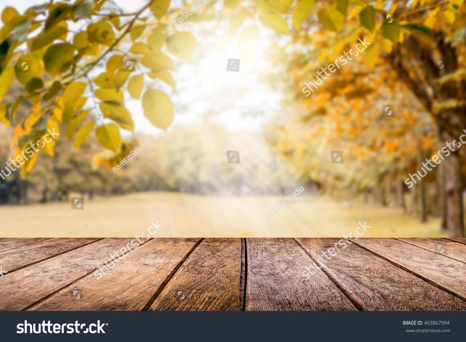 Fall Wallpaper Online Image Amp Photo Editor Shutterstock Editor