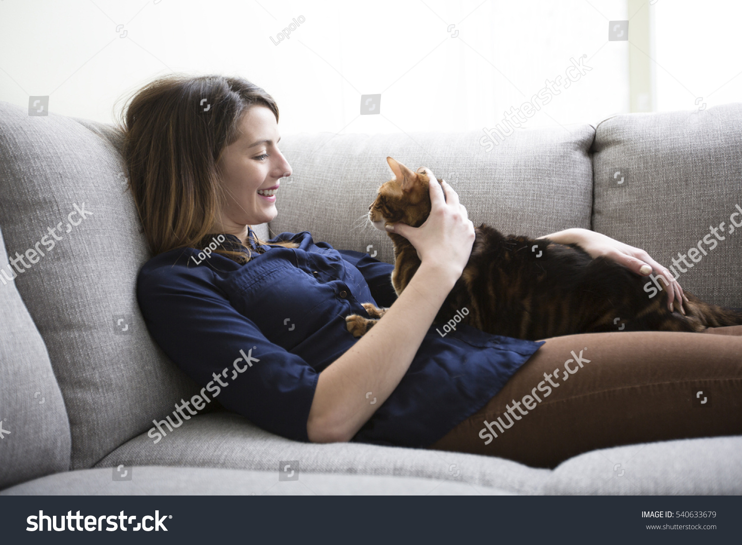 Cat Living Room On Couch Stock Photo 540633679