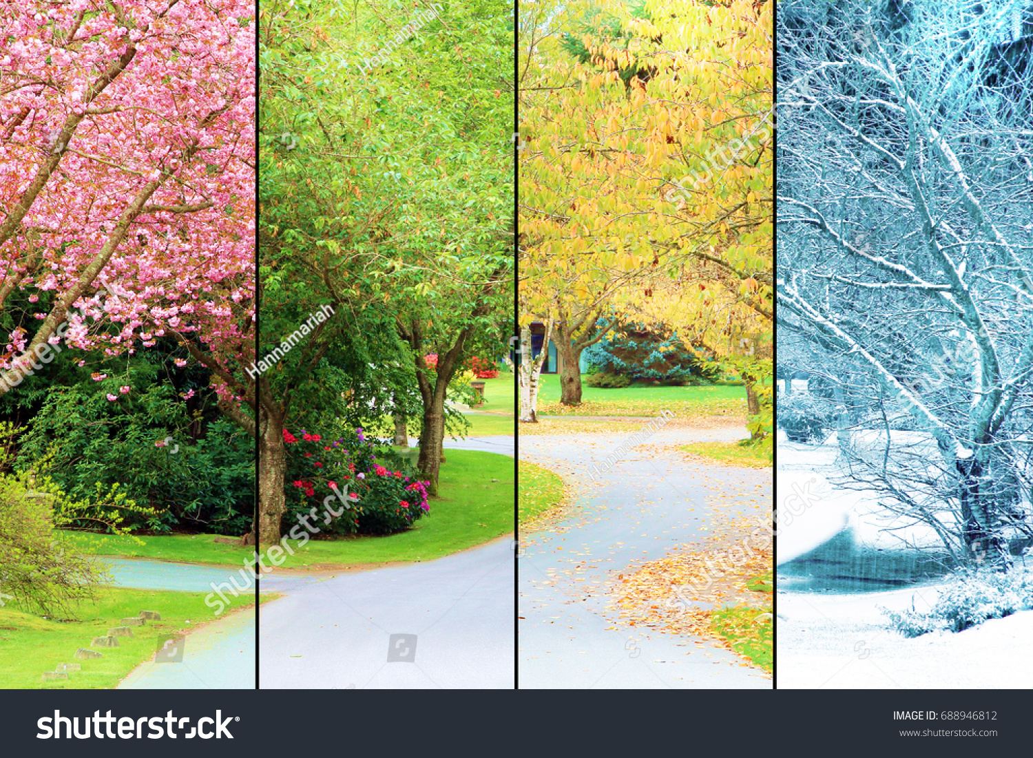 All Seasons Tree Lined Street Photographed All Four Stock Photo