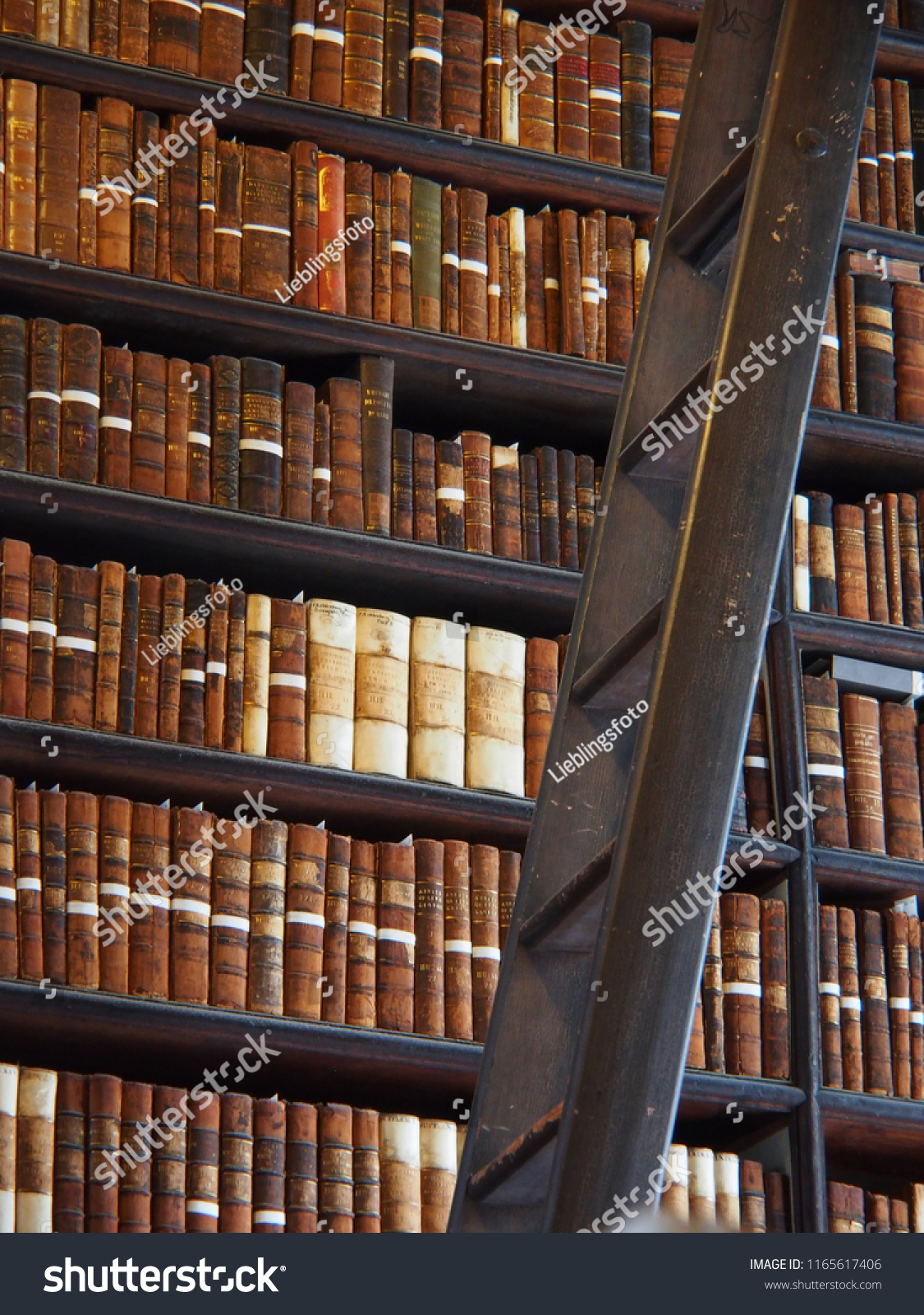 Leiter Regal Bibliothek Regal Alt Leiter Wissen Traditionell Stock Photo Edit