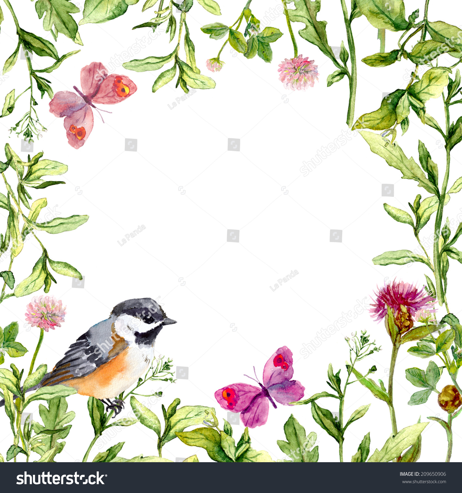 Beautiful Pictures Of Flowers And Butterflies Birds Border Frame With Summer Herbs Meadow Flowers Bird And