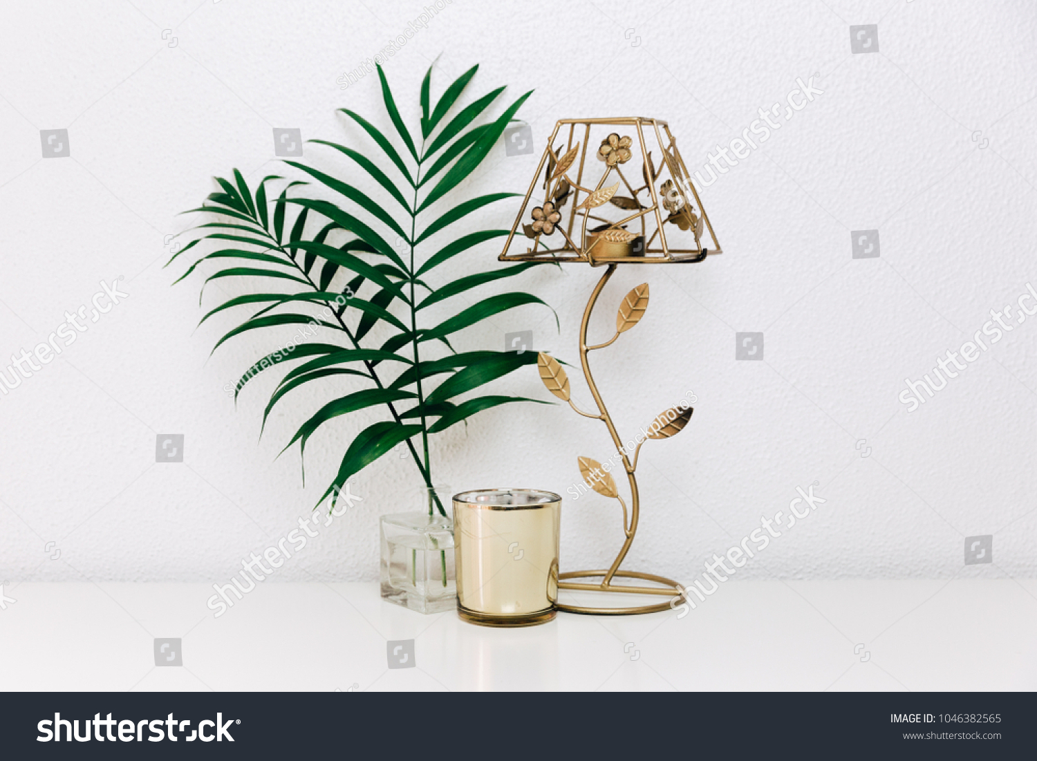 Chrysalidocarpus Space For Life Clean Eco Home Interior Decor Minimal Stock Photo Edit Now
