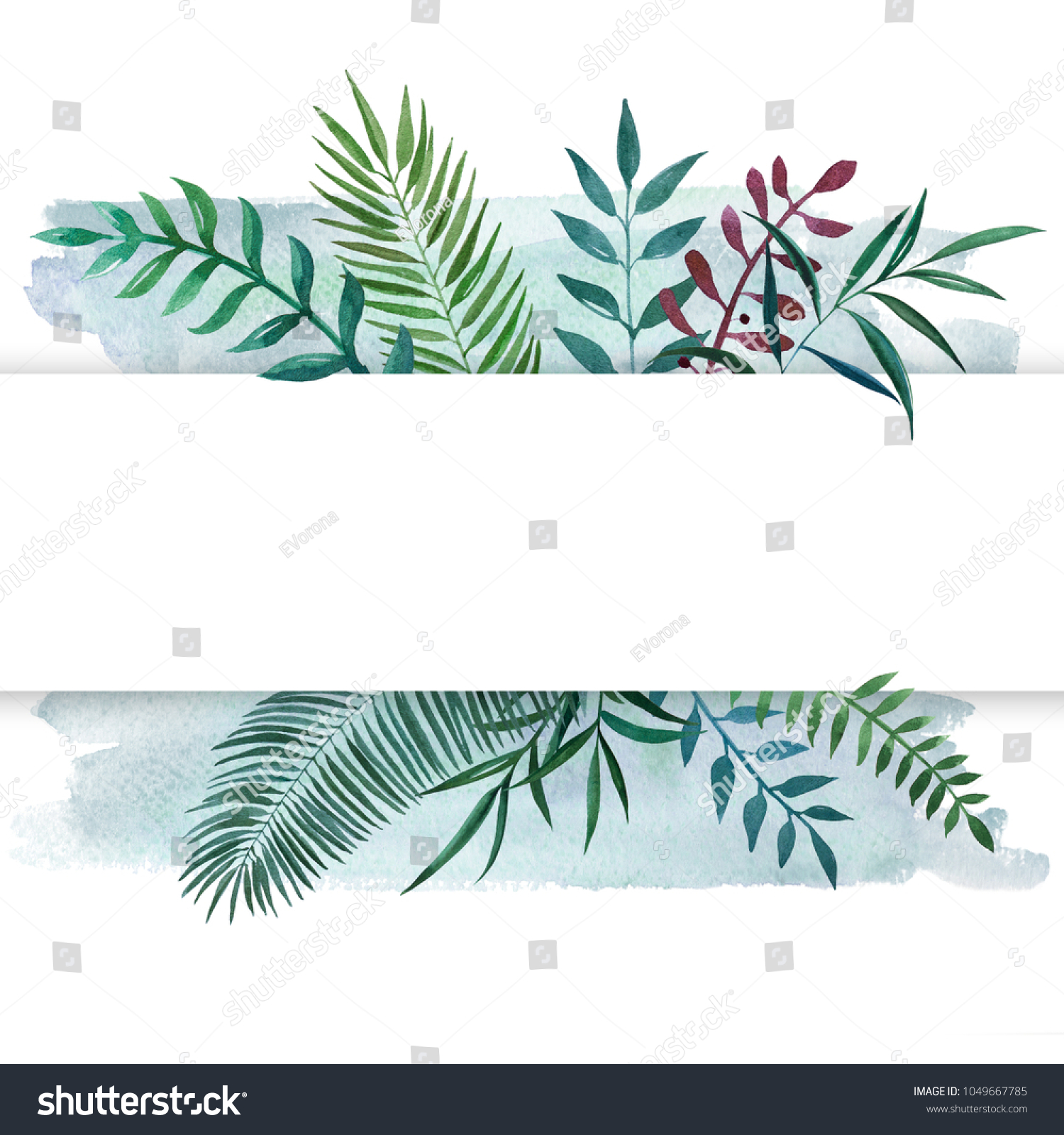 Paspartoe Hema Hand Drawn Watercolor Illustration Differents Plants Stock
