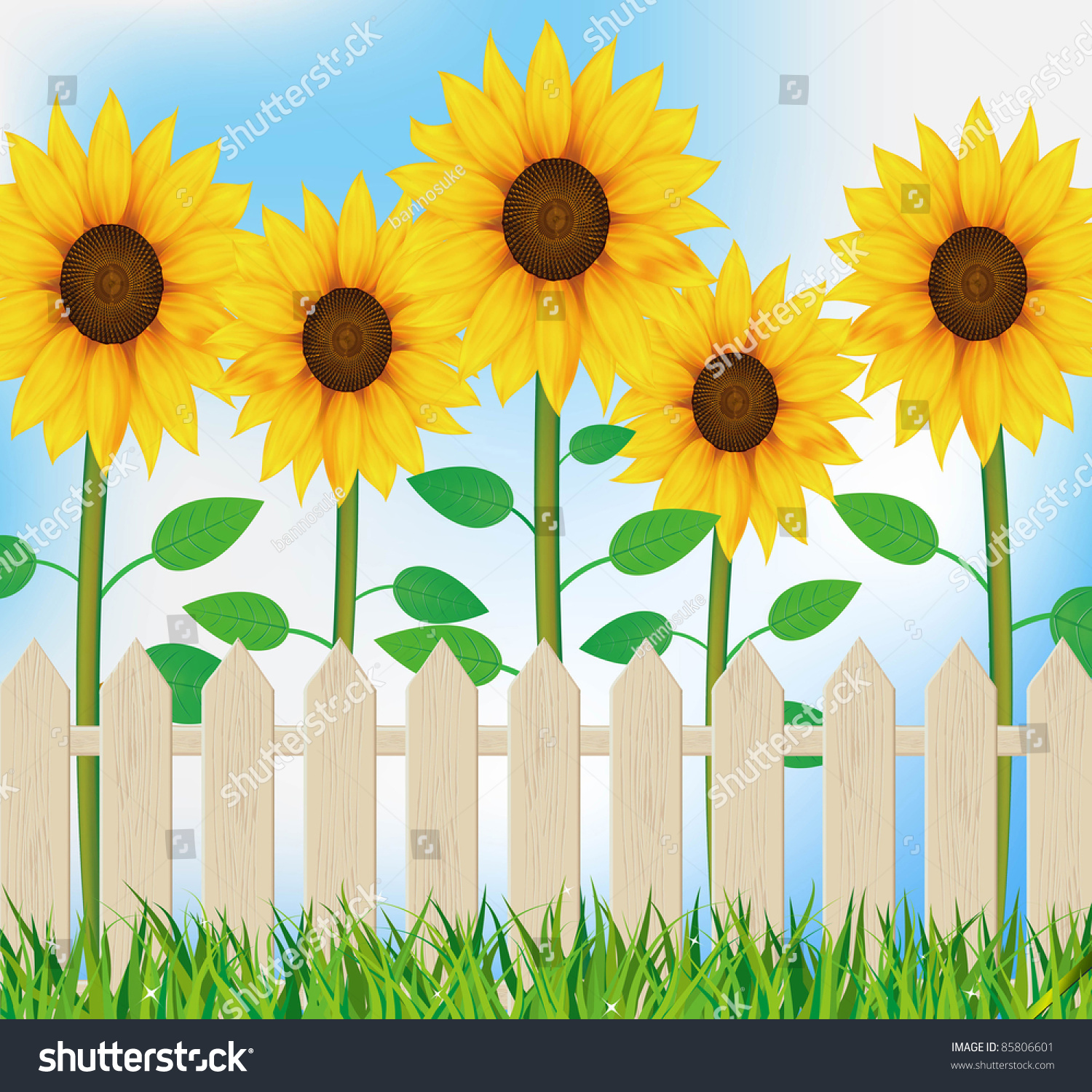 Fall Sunflowers Wallpaper Illustration Sunflower Garden Fence Stock Illustration