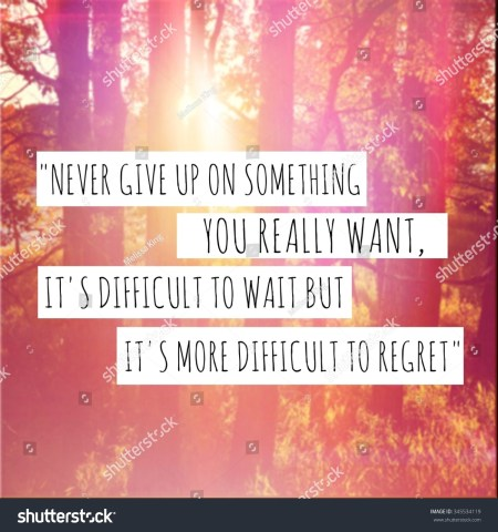 Quotes Never Give Up On Something