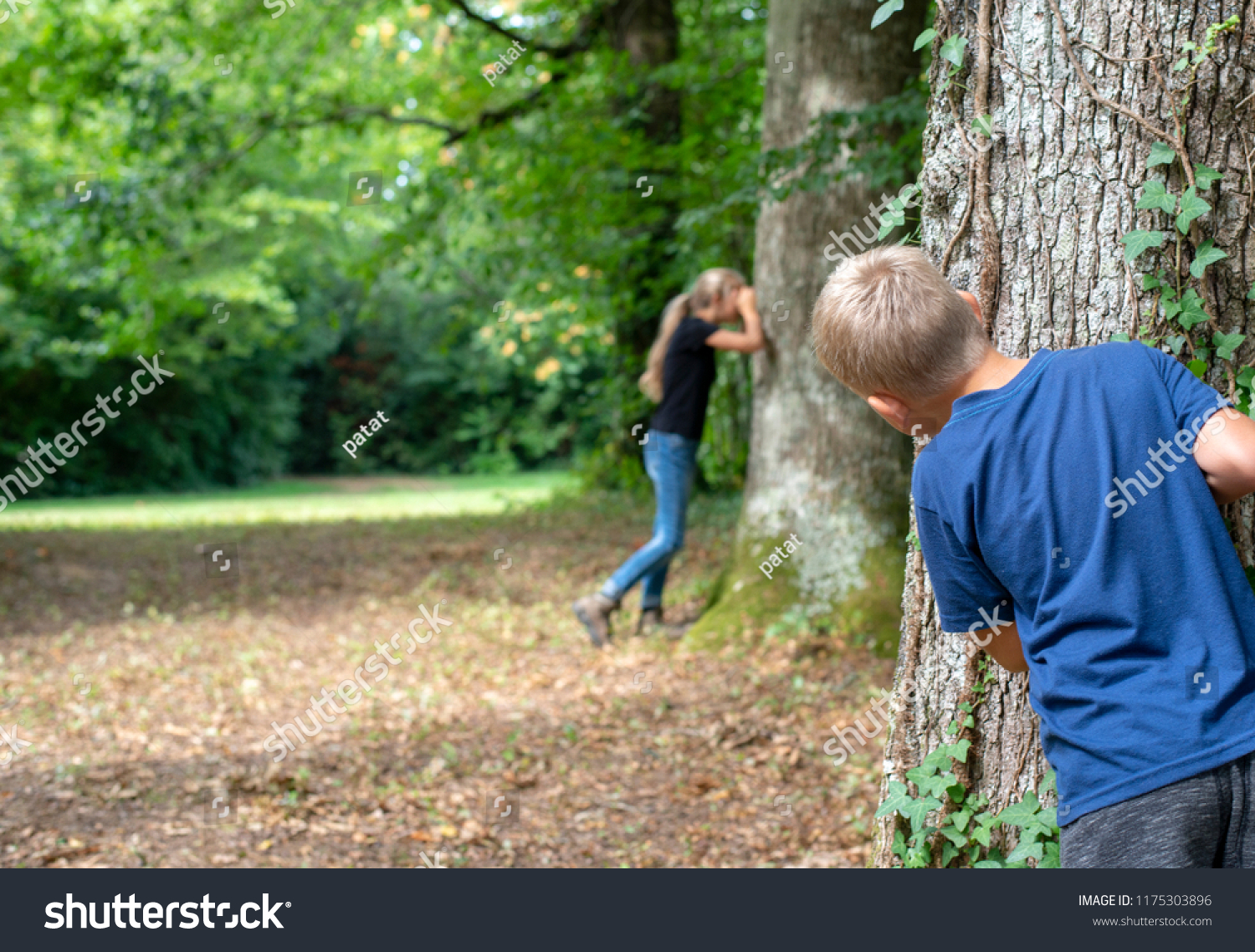 Hide And Seek Kids Kids Playing Hide Seek Forrest Stock Photo Edit Now 1175303896