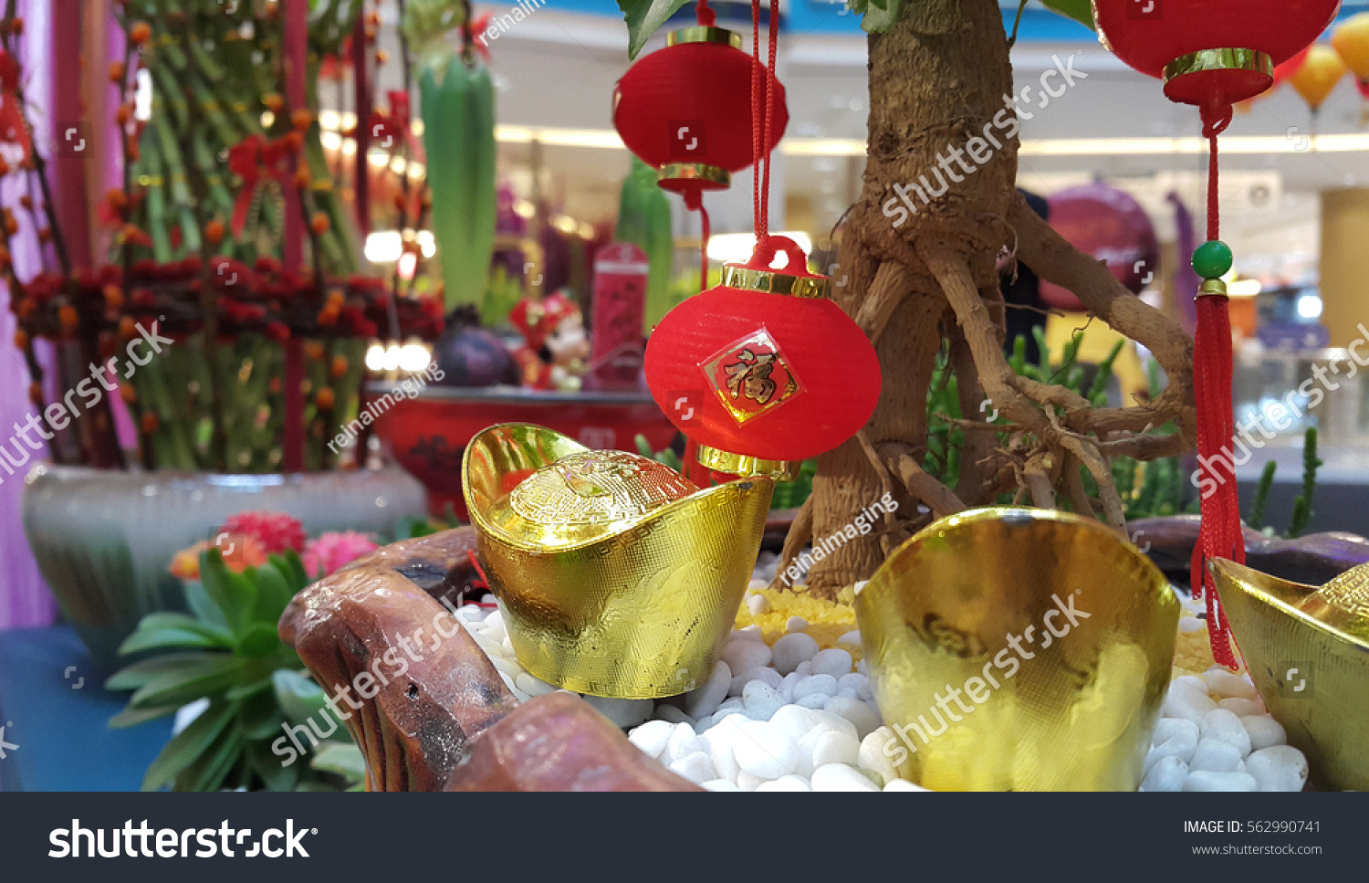 Asian Plants For Sale Kuala Lumpur Malaysia January 2017 Chinese Stock Photo Edit Now