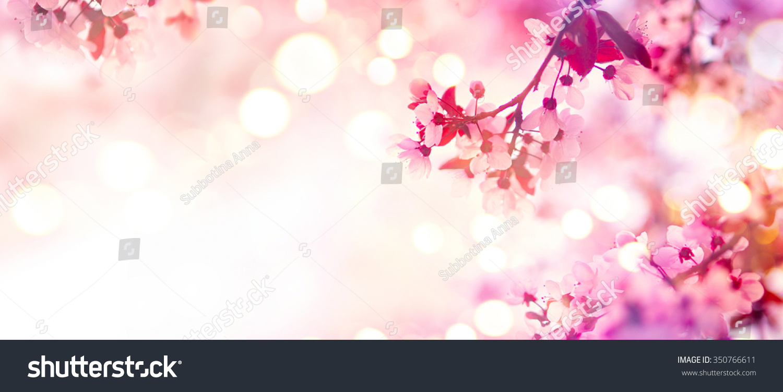 Sonic Fall November Wallpaper Beautiful Spring Scenery Clip Art Cliparts