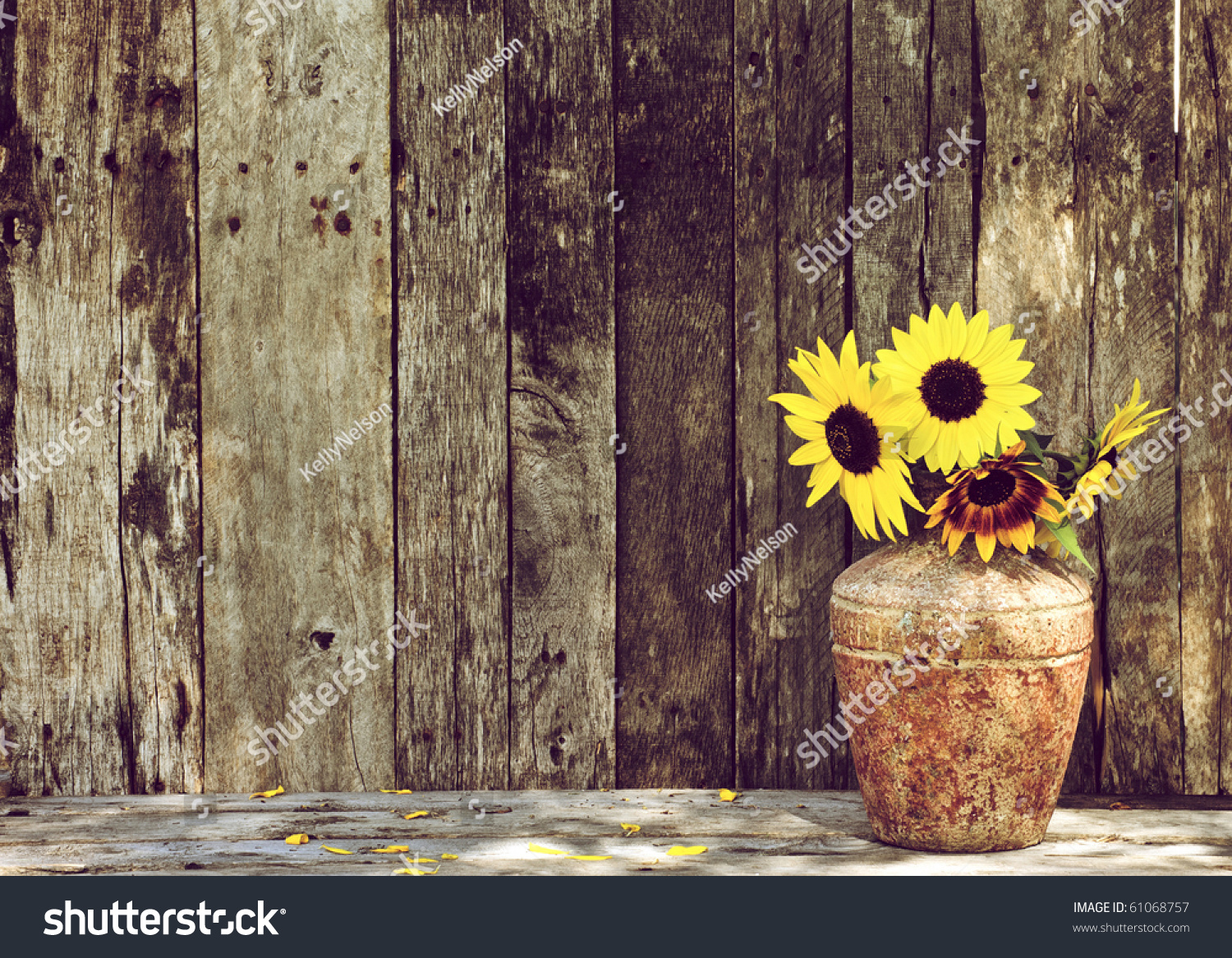Cute Rustic Fall Wallpapers Sunflowers In A Vase On A Rustic Grunge Background With