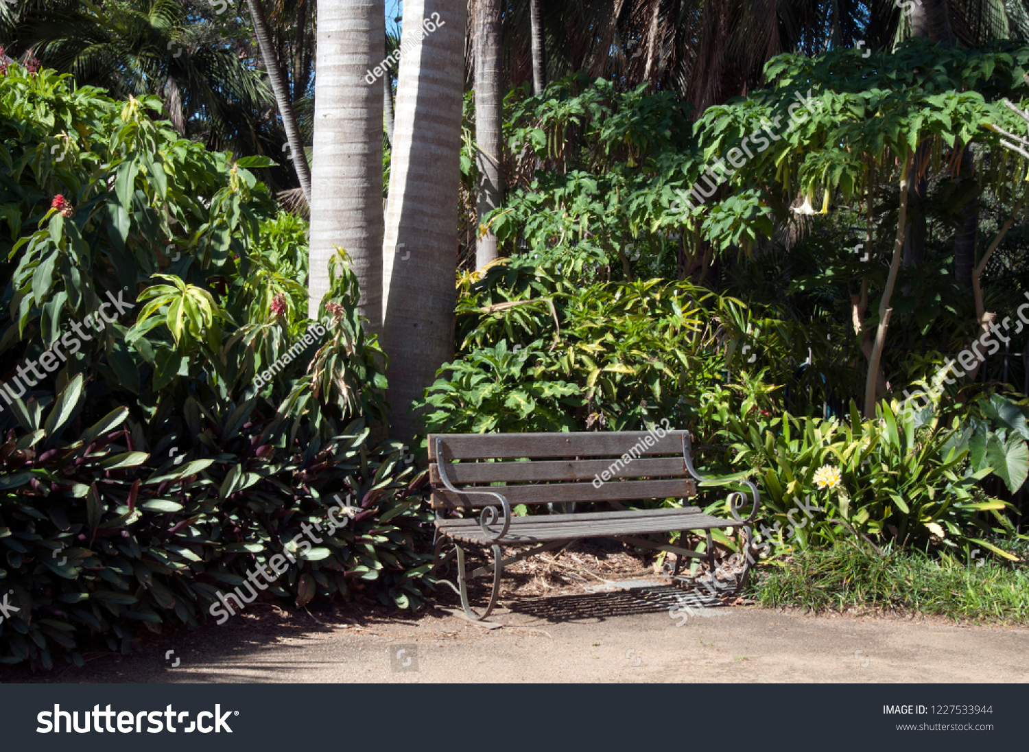 Garden Bench Australia Sydney Australia Wooden Seat Corner Garden Stock Photo Edit Now