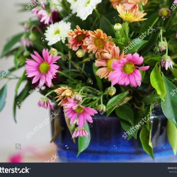 Basket Mixed Beautiful Flower Together Stock Photo Royalty Free
