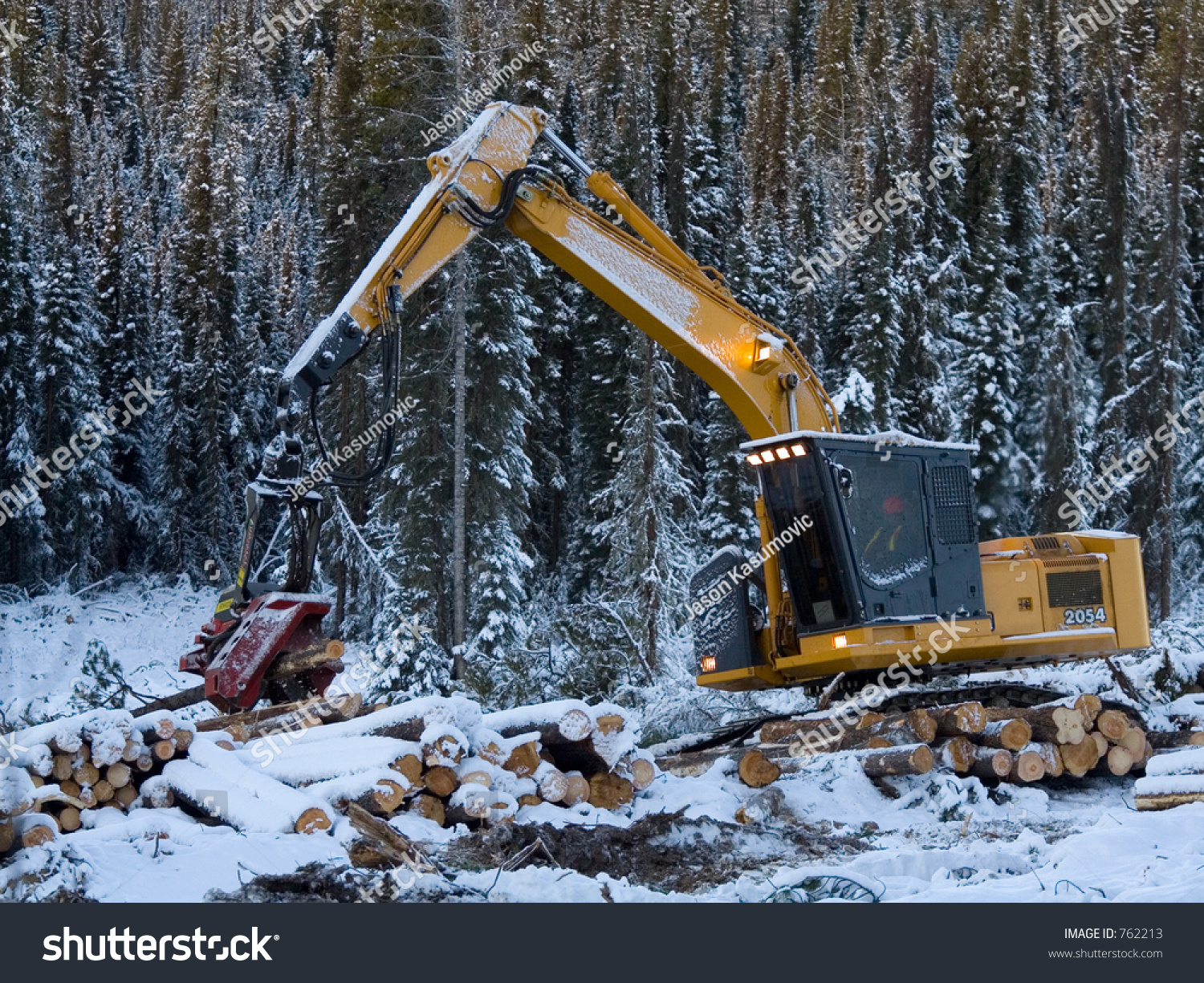 Tree Cutter Tree Cutter Stock Photo Edit Now 762213 Shutterstock