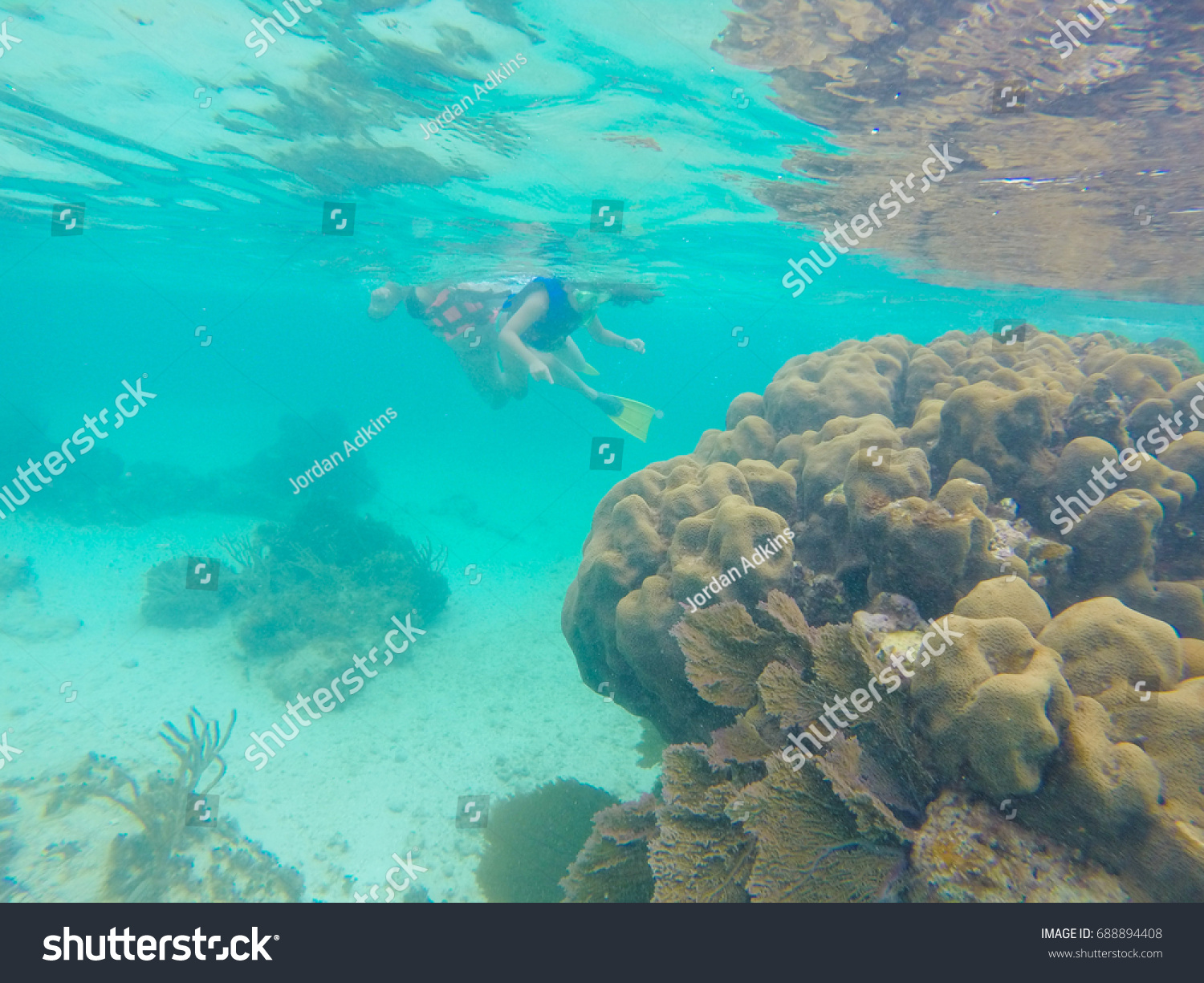 Cancun Trip Unhealthy Coral Reef Cancun Mexico Snorkeling Stock Photo Edit