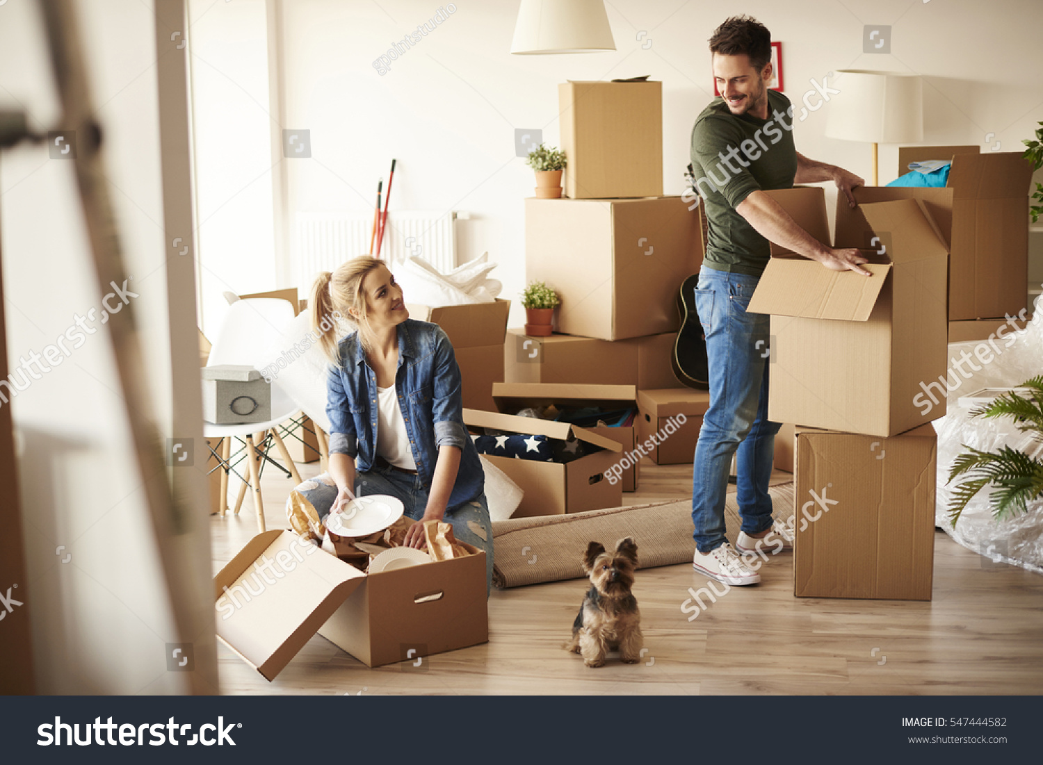 Young Couple Apartment Young Couple New Apartment Small Dog Stock Photo 547444582
